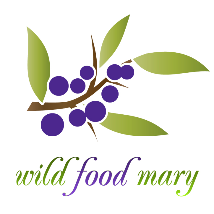 wild food mary - forager Ireland - logo