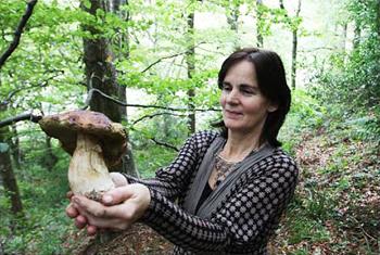 Mary Bulfin - wild mushroom forager