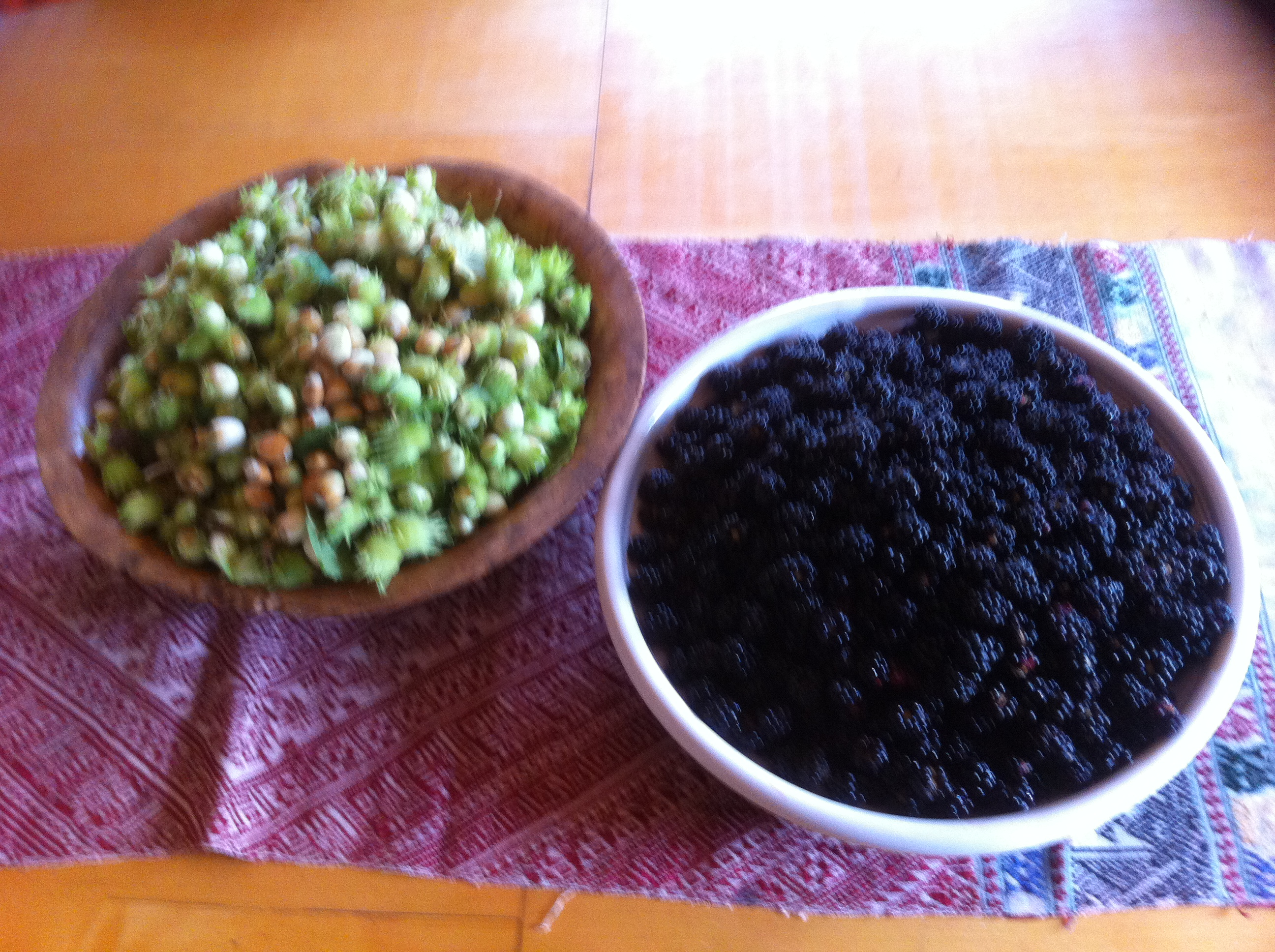 Hazelnuts and Blackberries gathered on late September stroll, thanks Eve Titi, Maja Martin for help and great day out